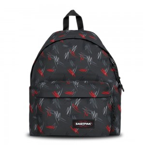 [Black Friday 2019] Eastpak Padded Pak'r® Scribble Black livraison gratuite