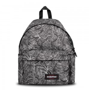 [Black Friday 2019] Eastpak Padded Pak'r® Brize Dark livraison gratuite