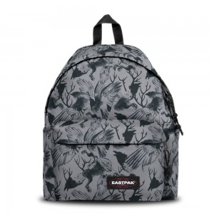 [Black Friday 2019] Eastpak Padded Pak'r® Dark Forest Grey livraison gratuite