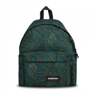 [Black Friday 2019] Eastpak Padded Pak'r® Brize Mel Dark livraison gratuite