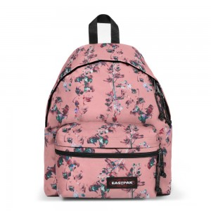 [Black Friday 2019] Eastpak Padded Zippl'r Romantic Pink livraison gratuite