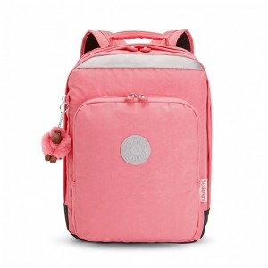 Black Friday 2020 | Kipling Grand Sac à Dos Avec Protection Pour Ordinateur Portable Pink Flash pas cher