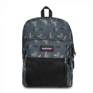 Eastpak Pinnacle Scribble Downtown livraison gratuite