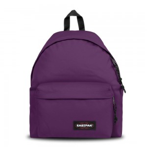 Eastpak Padded Pak'r® Power Purple livraison gratuite